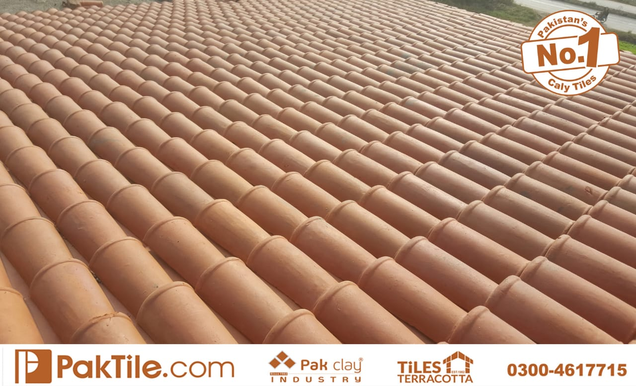 clay roofing tiles design