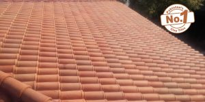 1 Natural Khaprail Tiles Manufacturer