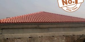 Kagan Brick Natural Khaprail Tile Color